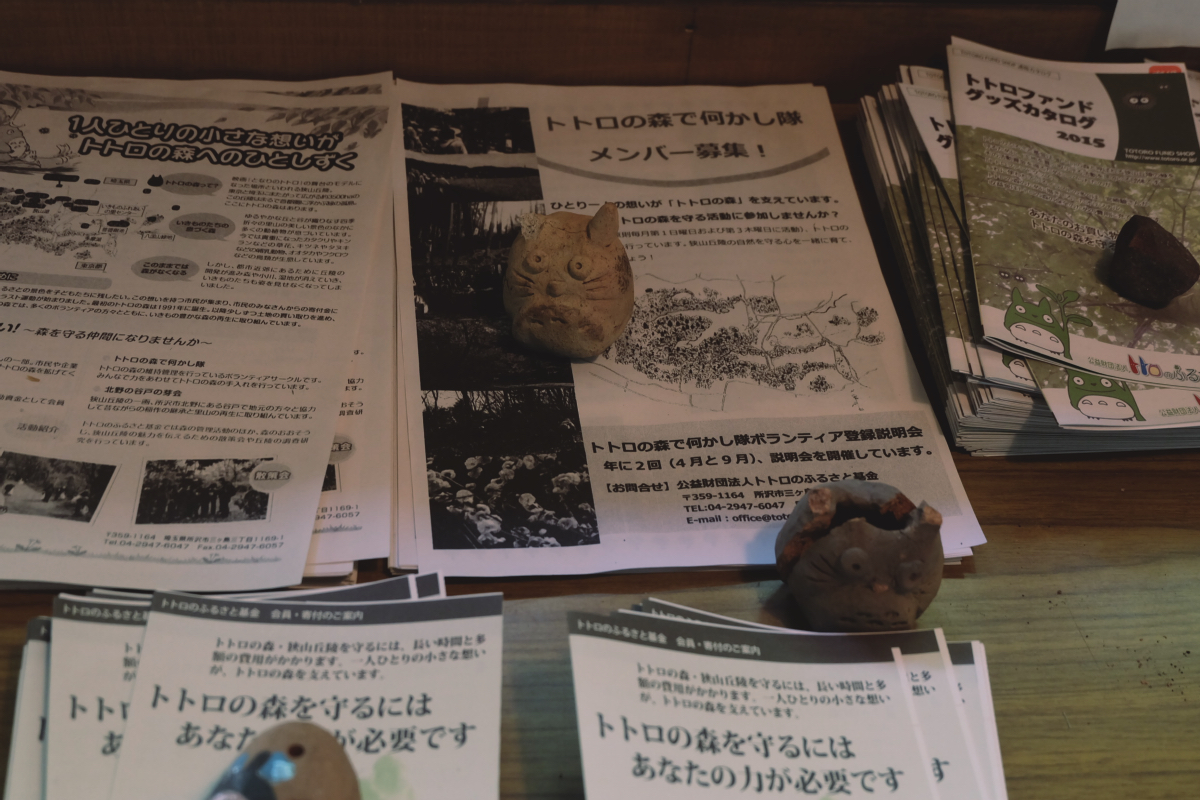 DSCF7061 totoro forest saitama