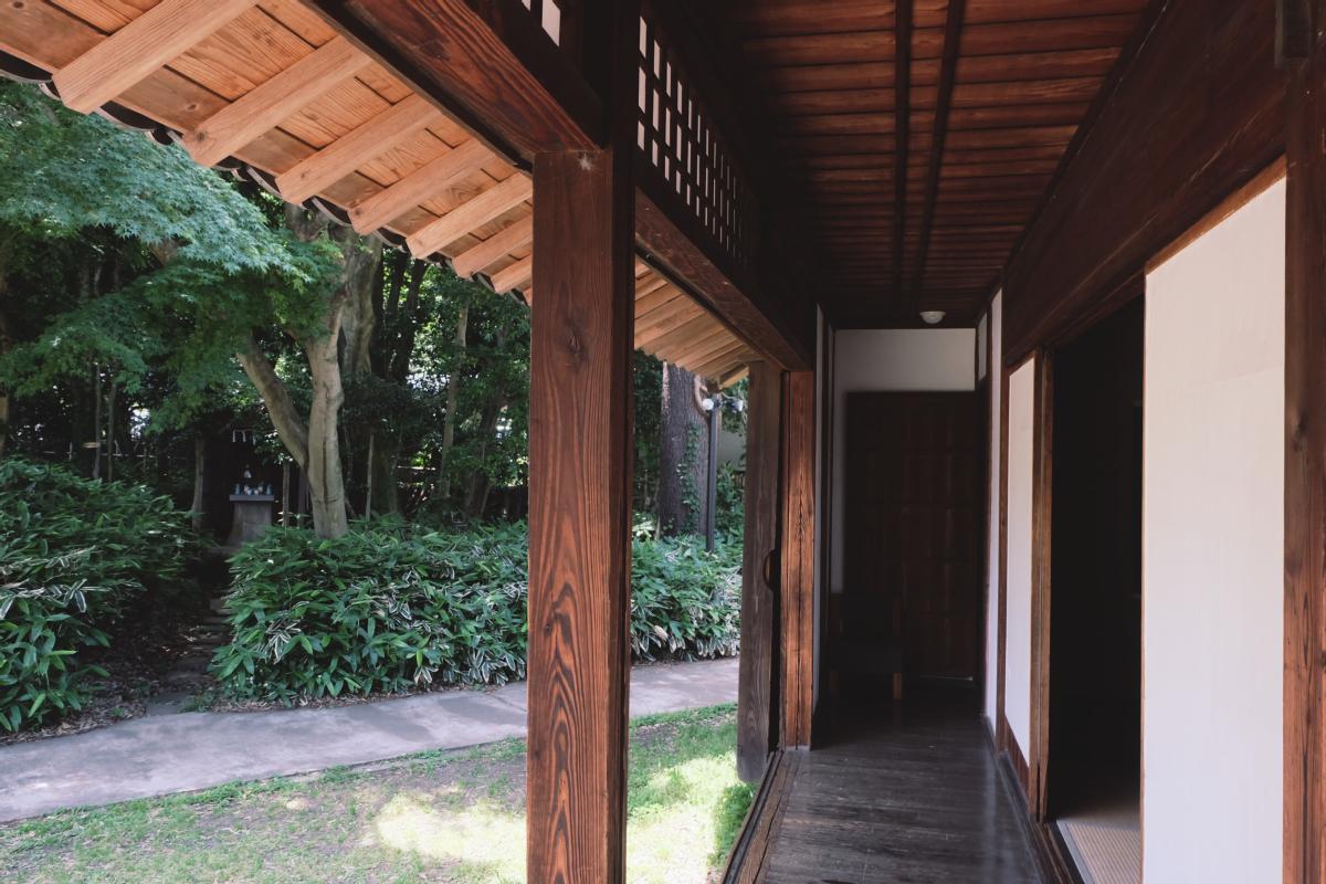 DSCF7088 totoro forest saitama