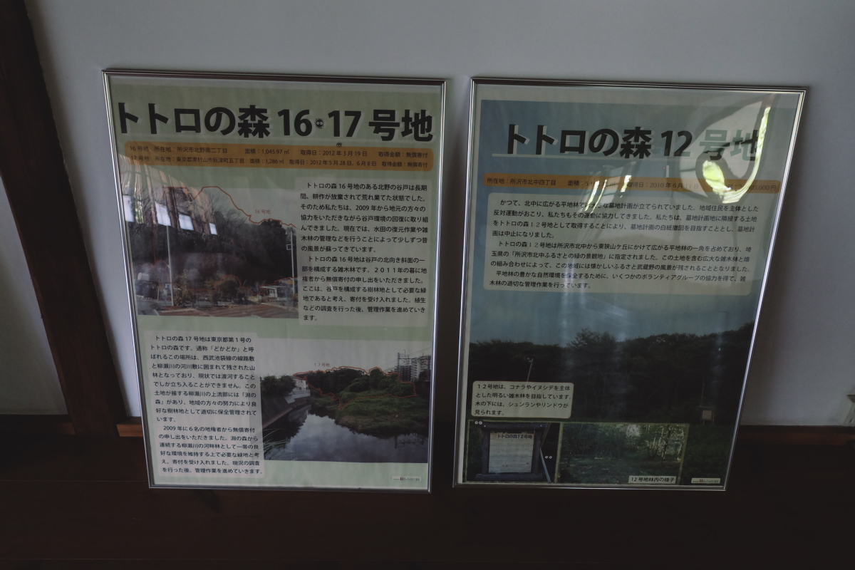 DSCF7119 totoro forest saitama