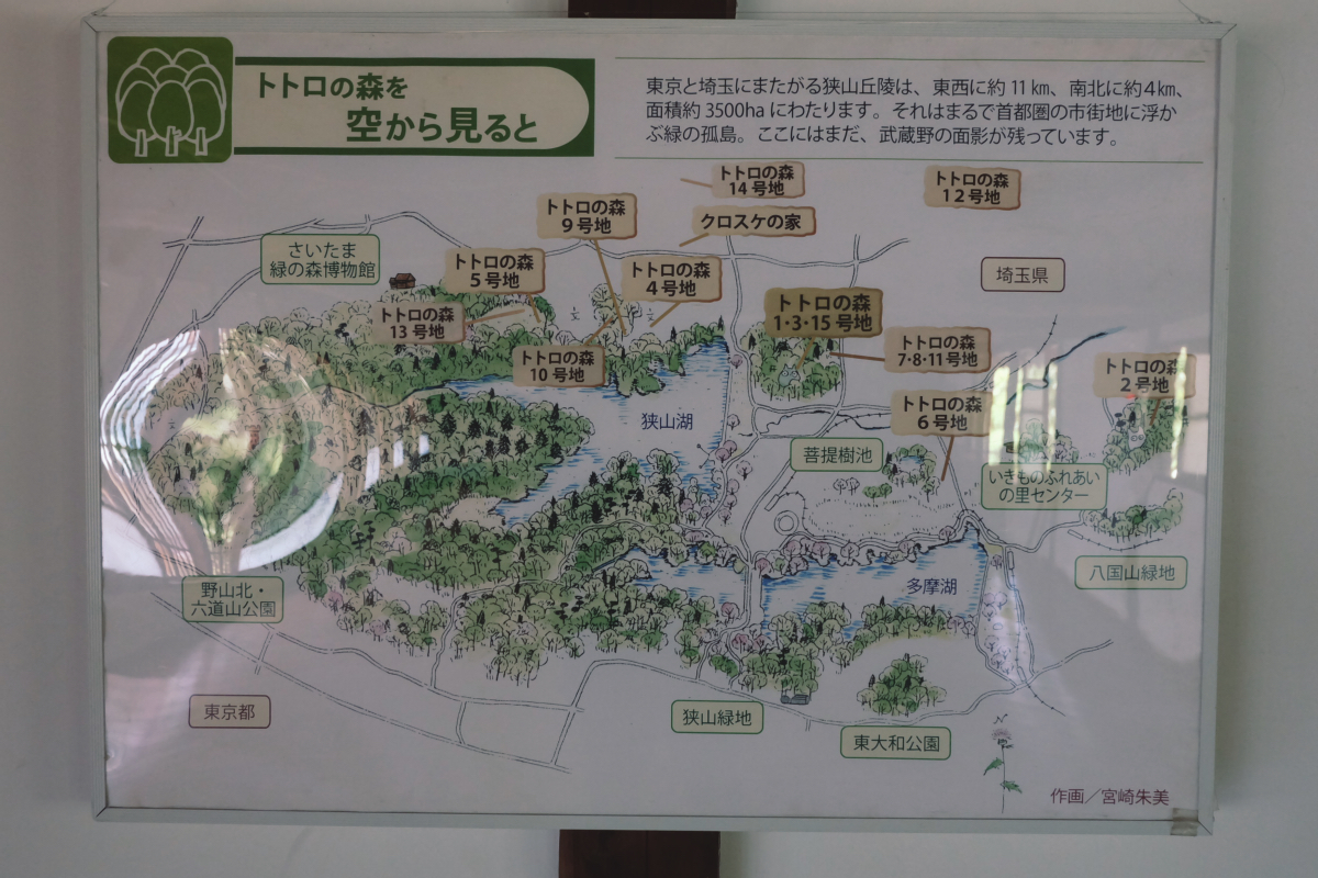 DSCF7120 totoro forest saitama