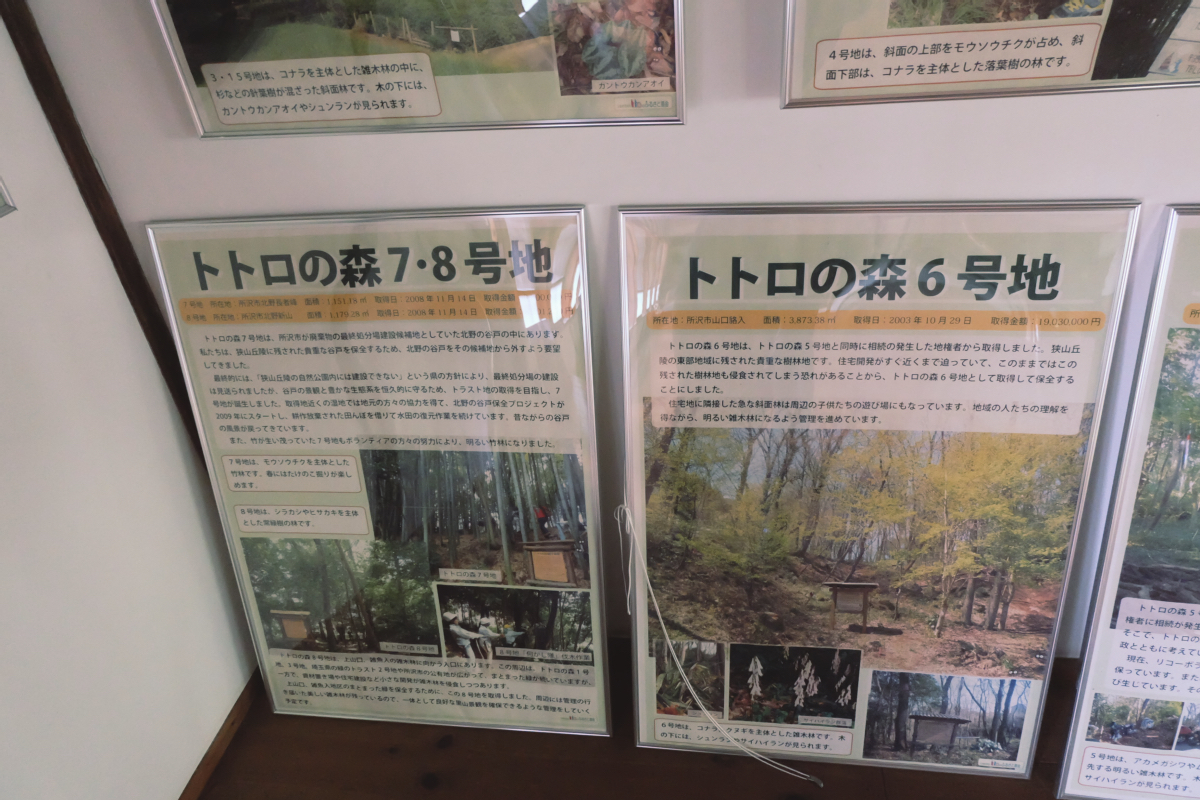 DSCF7122 totoro forest saitama