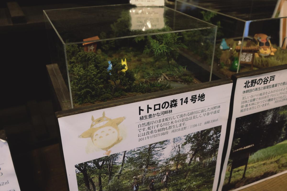 DSCF7127 totoro forest saitama