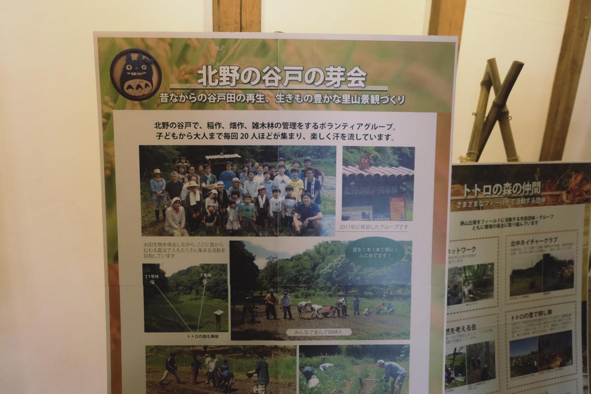 DSCF7134 totoro forest saitama