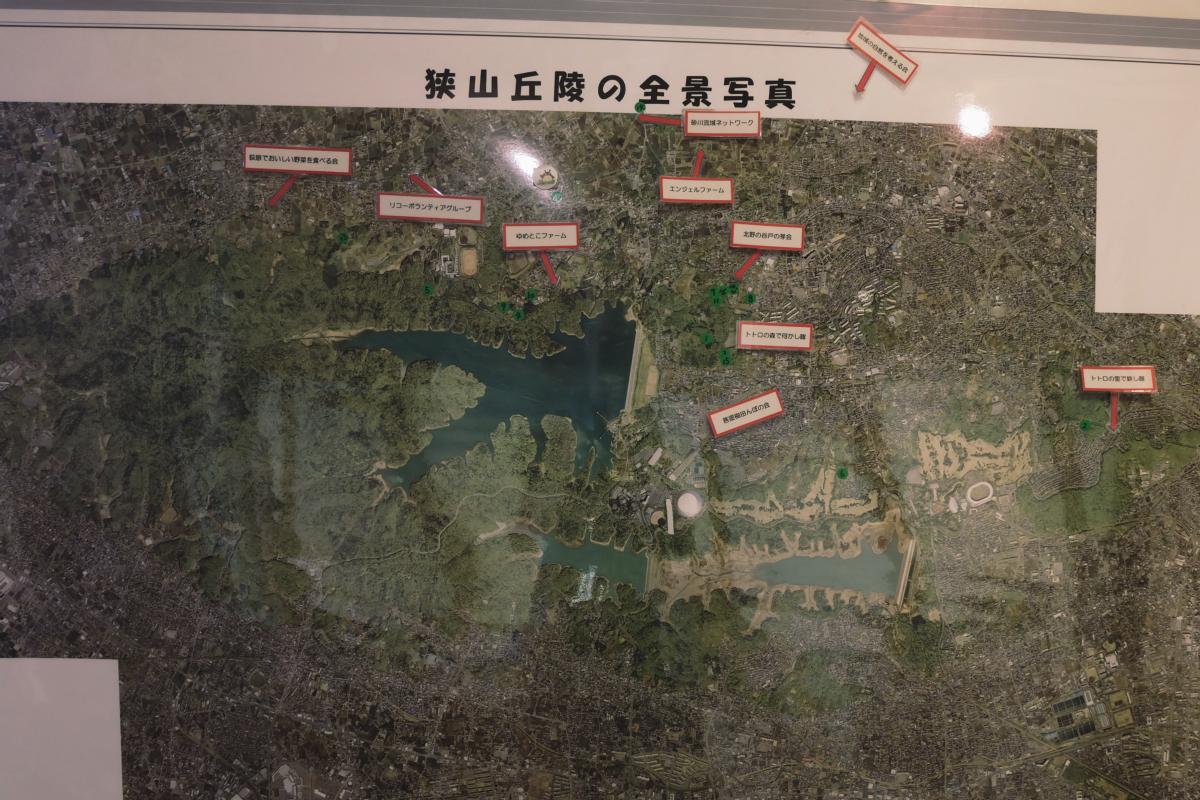DSCF7136 totoro forest saitama