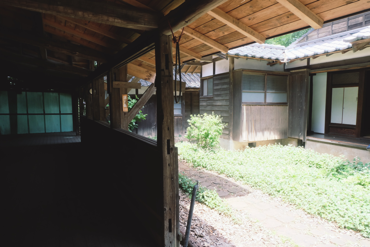 DSCF7139 totoro forest saitama