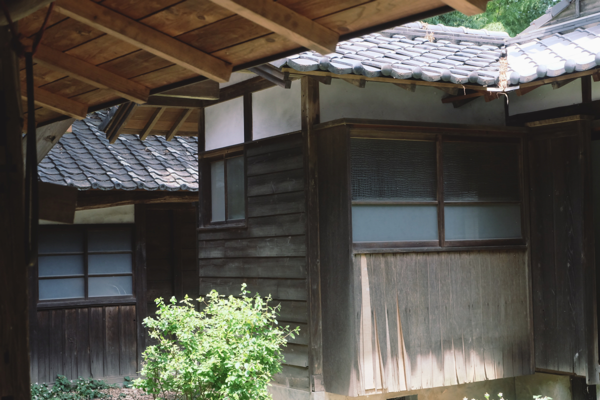 DSCF7140 totoro forest saitama