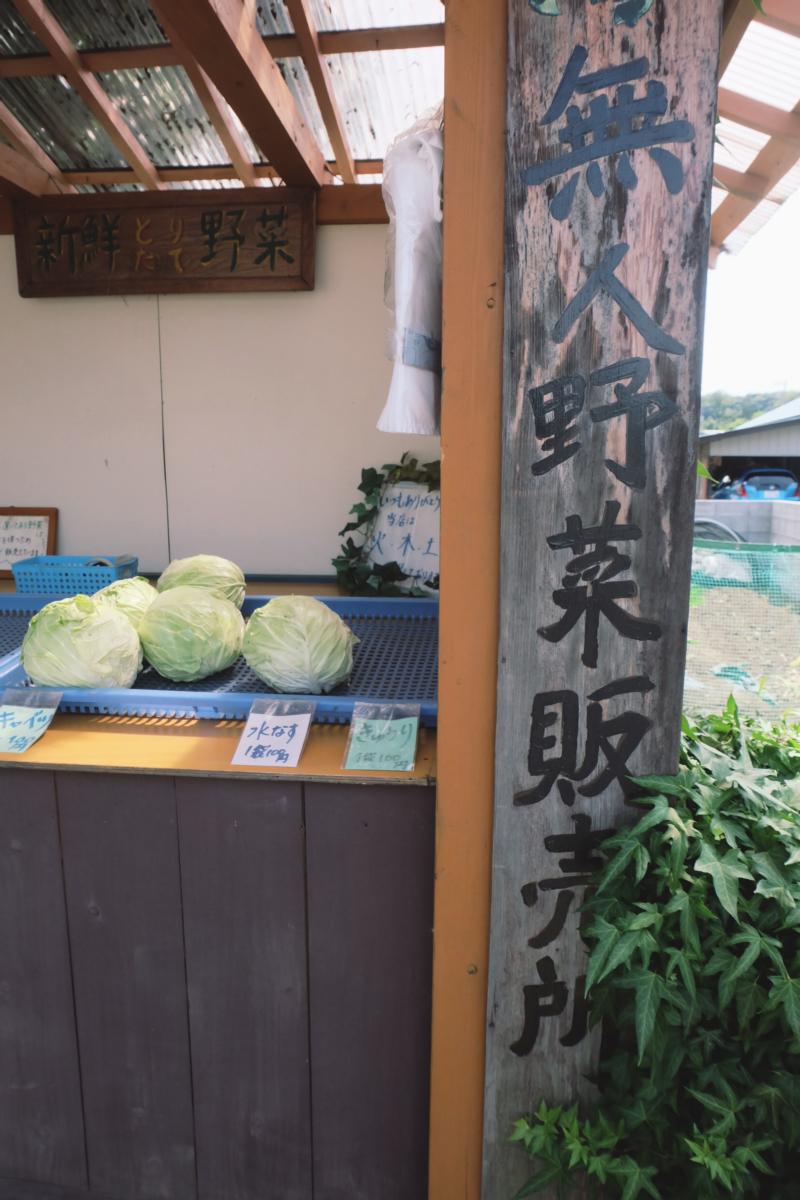 DSCF7180 totoro forest saitama