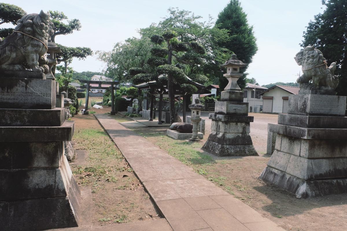 DSCF7185 totoro forest saitama
