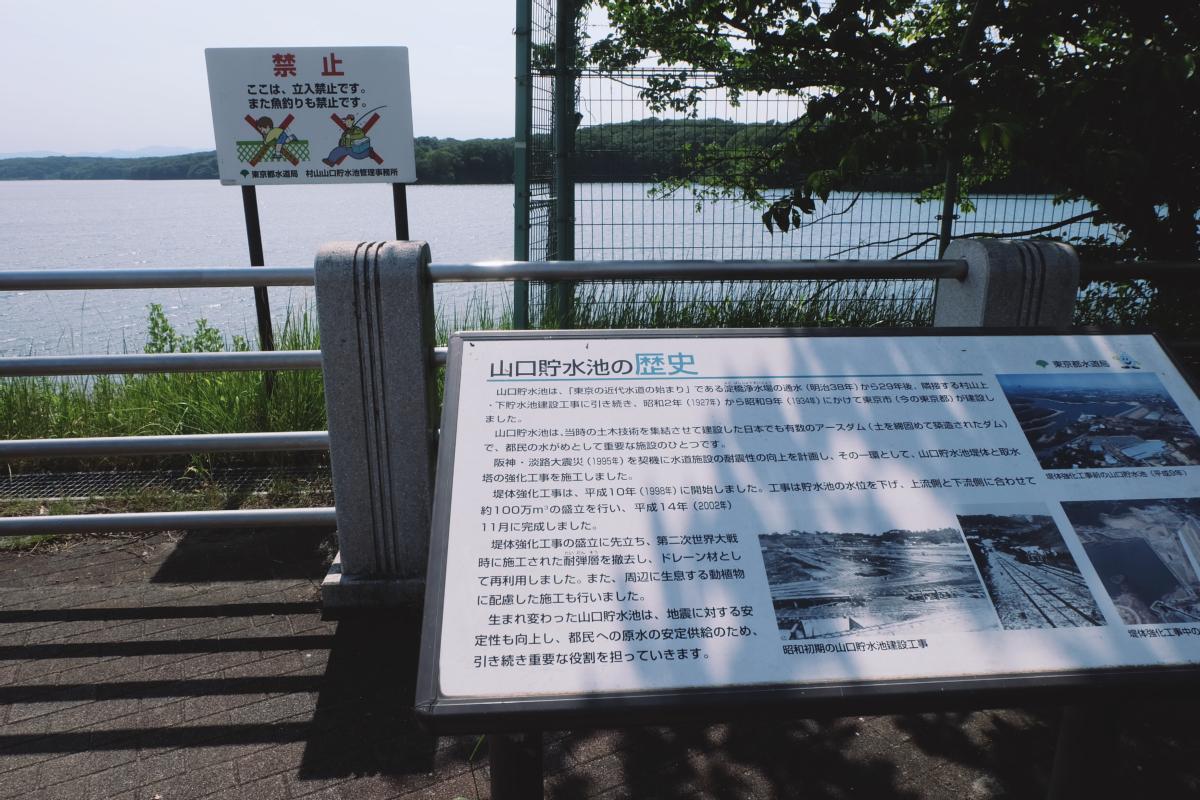 DSCF7194 totoro forest saitama