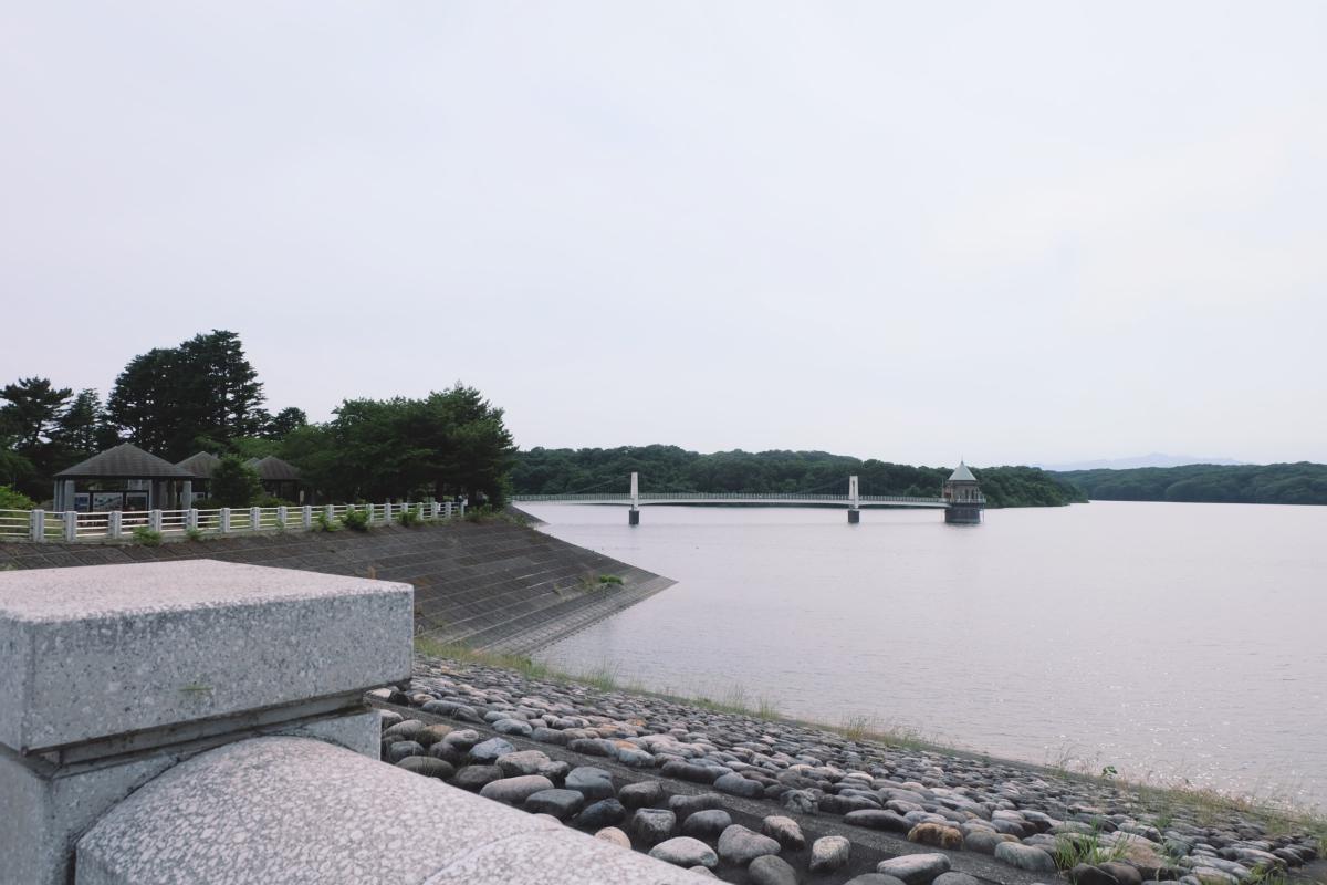 DSCF7202 totoro forest saitama