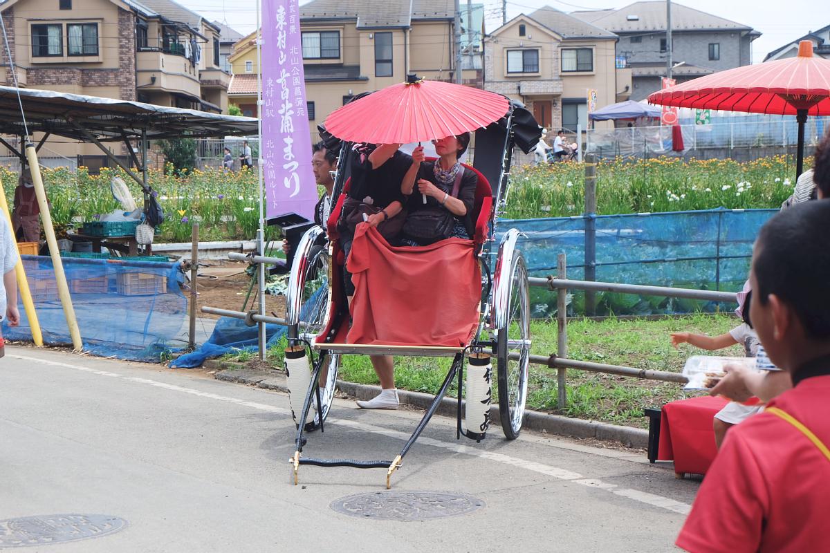 DSCF7226 Iris Festival Higashimurayama