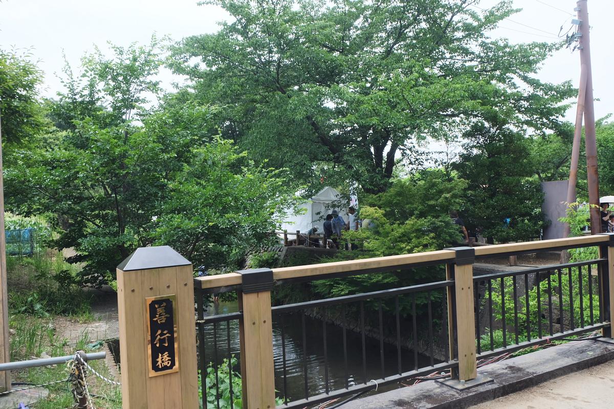 DSCF7227 Iris Festival Higashimurayama