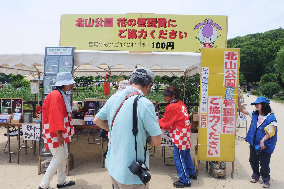 DSCF7231 Iris Festival Higashimurayama
