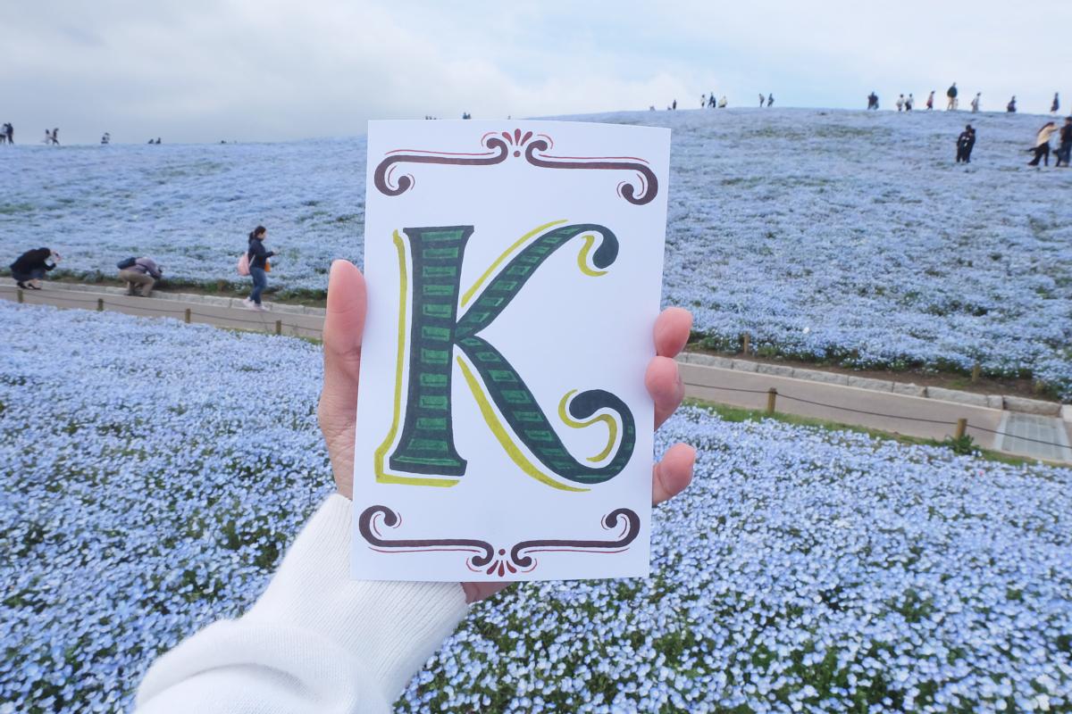 Nemophila Hitachi Seaside Park Rainbowholic Japan Kawaii 77