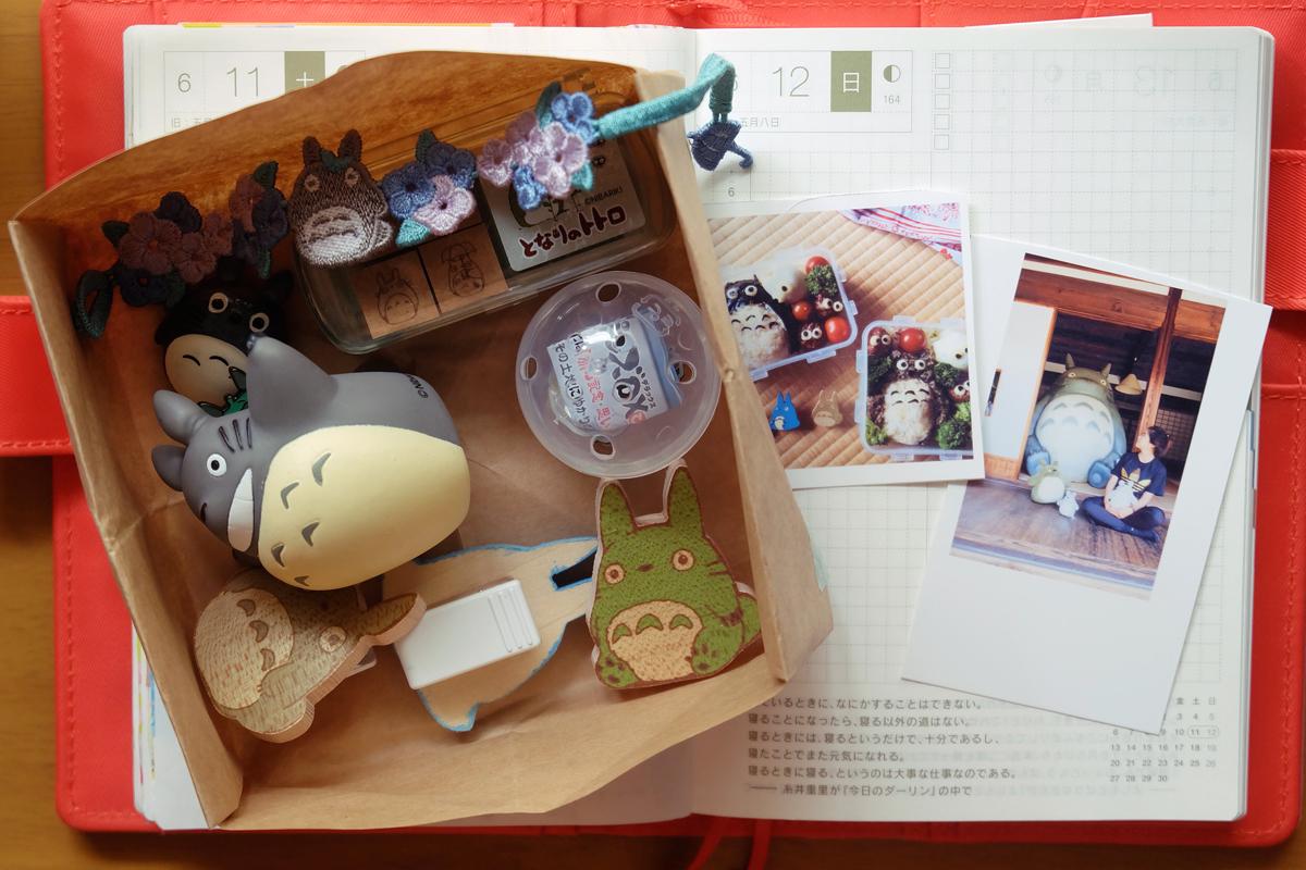 kawaii totoro hobonichi diary 2
