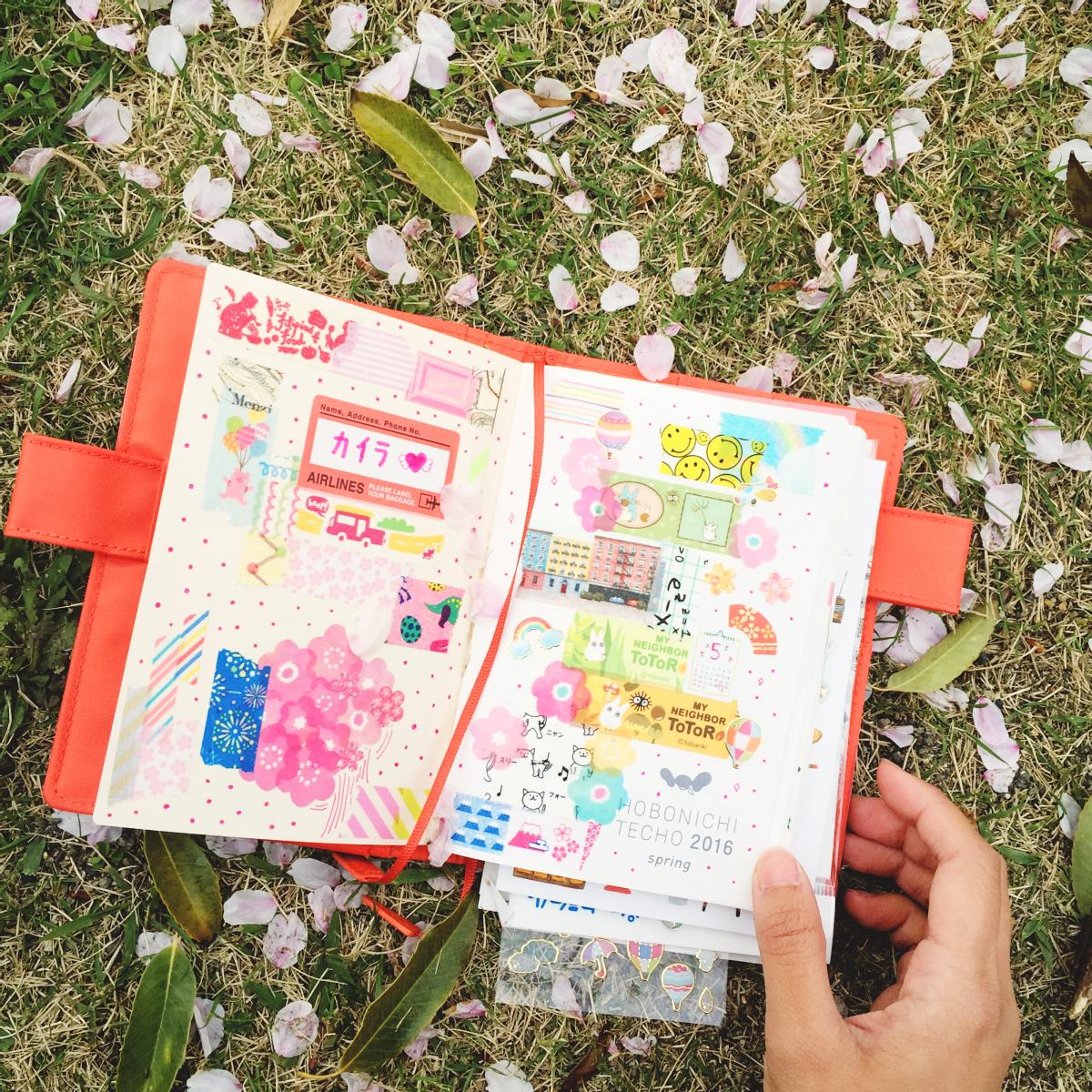 abc x rainbowholic sakura spring 2016 japan 80
