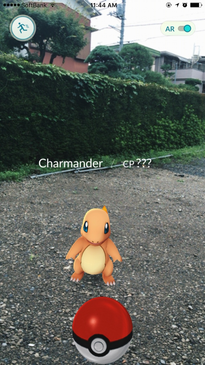 charmander-pokemon-go.jpg