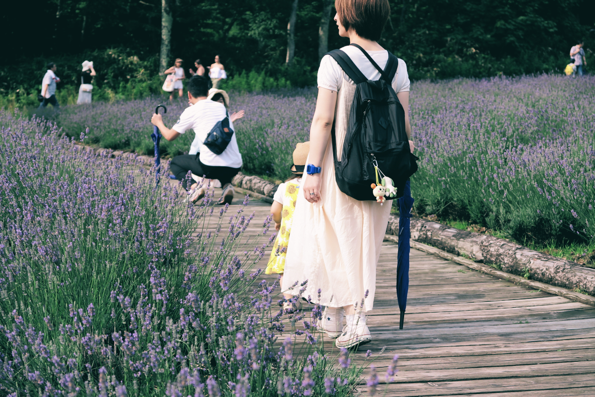IMG_0879Tambara Lavender Park 2