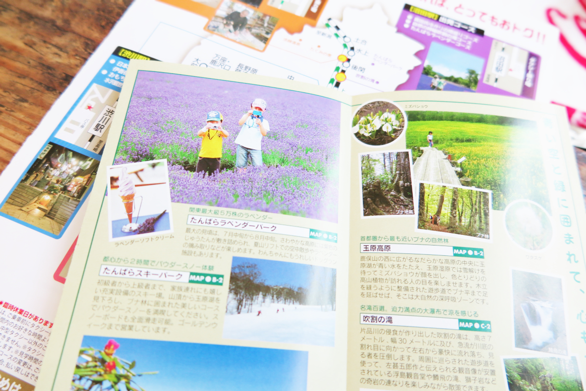 Kawaii Lavender Tambara Park 10