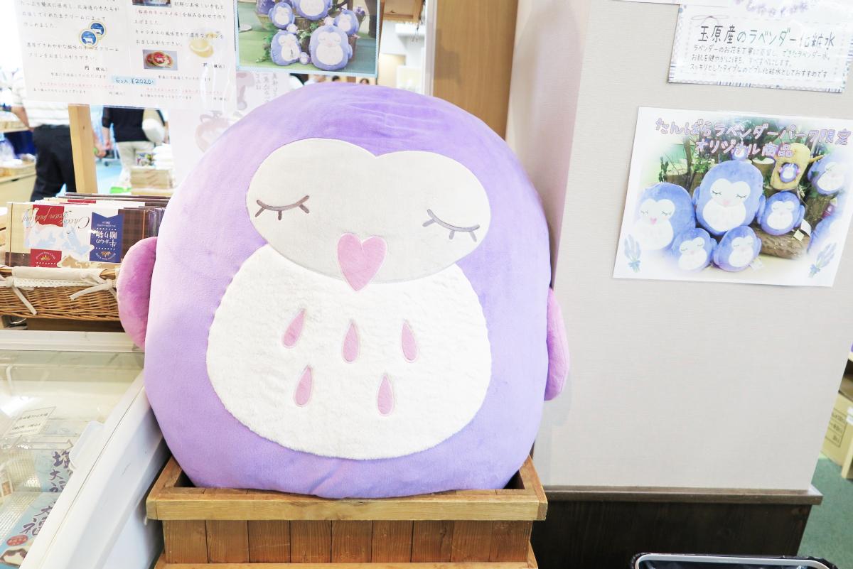 Kawaii Lavender Tambara Park 17