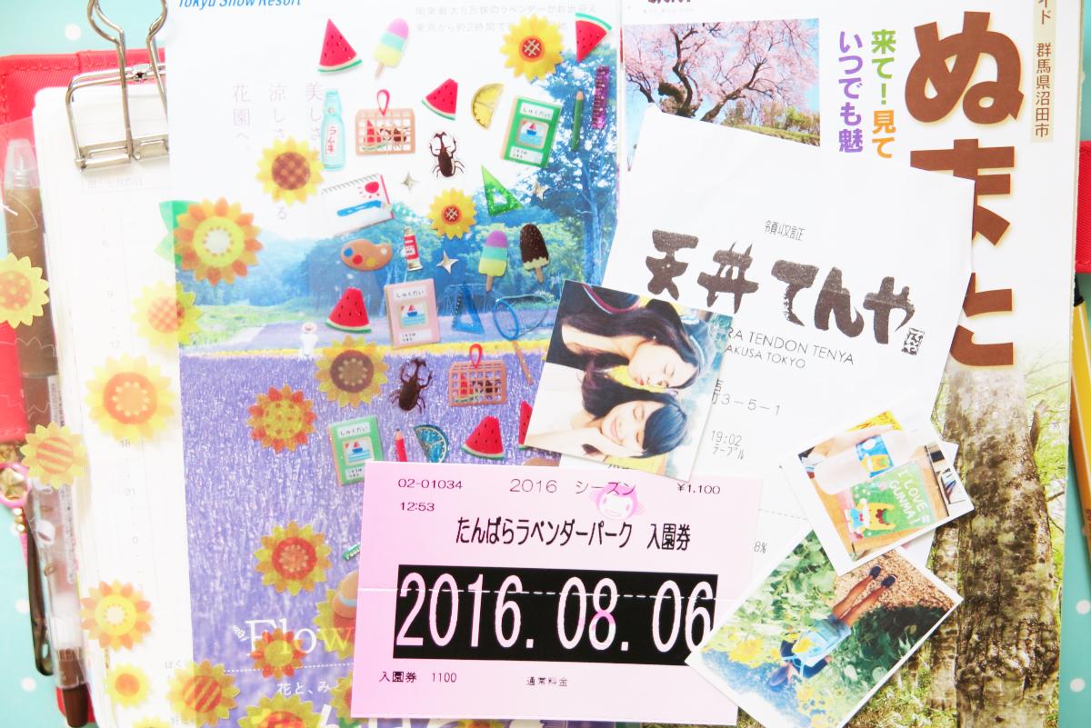 Kawaii Lavender Tambara Park 46