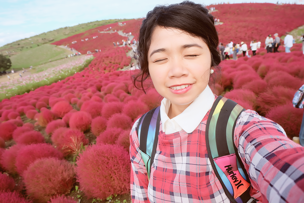 kochia-hitachi-seaside-park-autumn-japan-travel-ibaraki-28