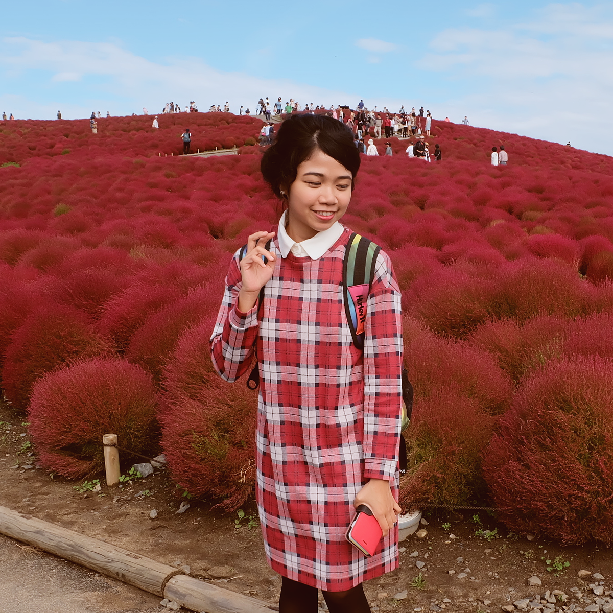 kochia-hitachi-seaside-park-autumn-japan-travel-ibaraki-46