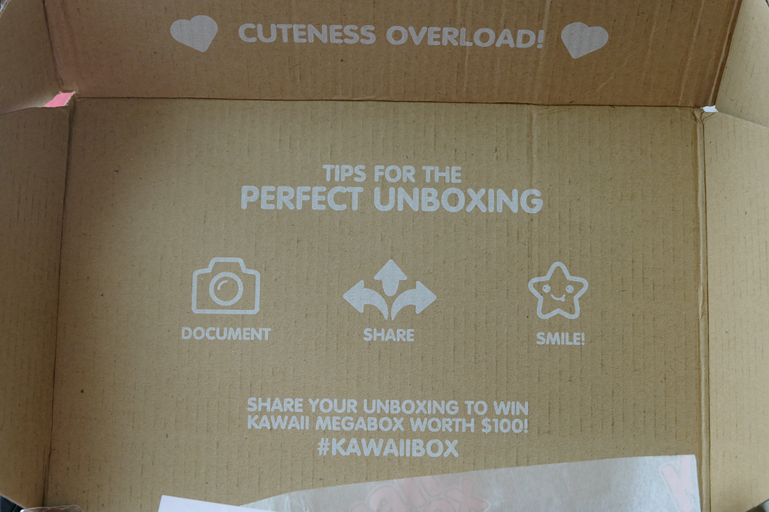 kawaii-box-rainbowholic-4