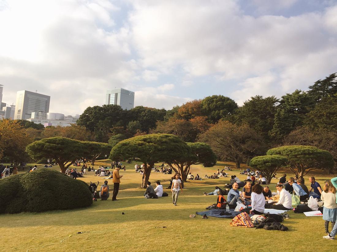 koyo-autumn-shinjuku-1