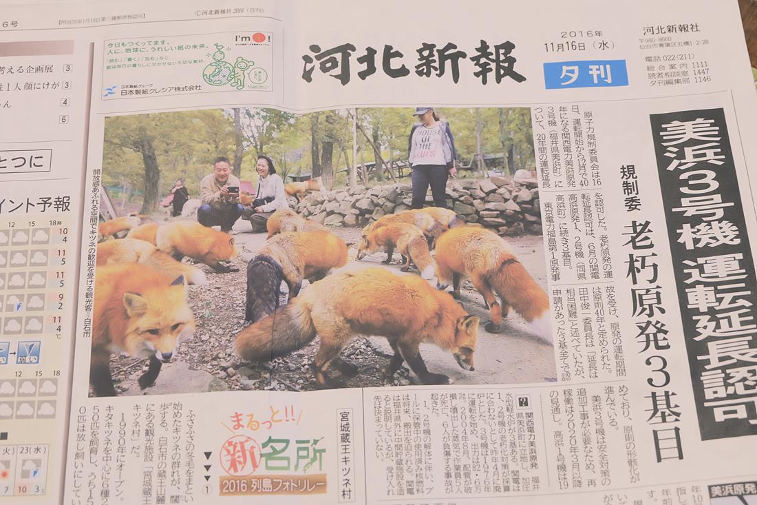 miyagi-zao-fox-village-rainbowholic-108