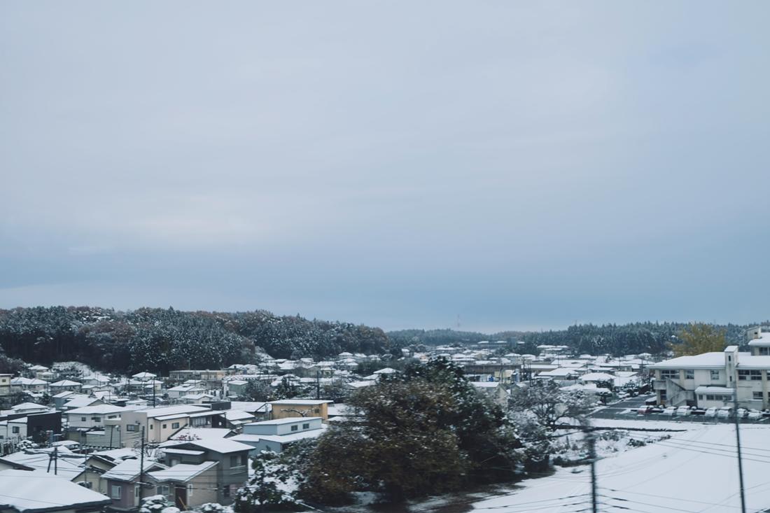 miyagi-zao-fox-village-rainbowholic-117