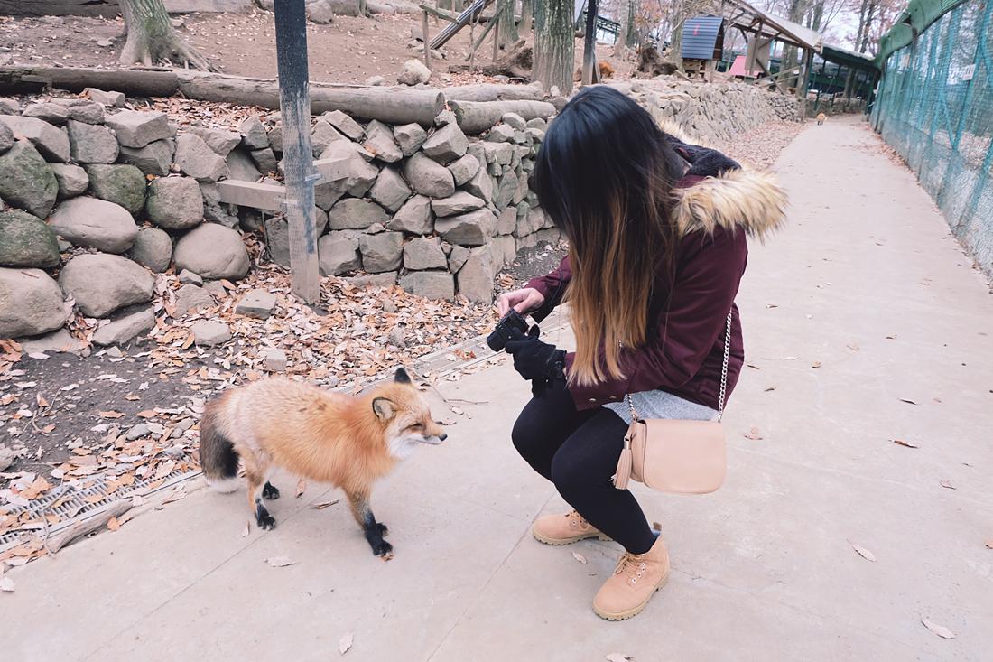 miyagi-zao-fox-village-rainbowholic-14