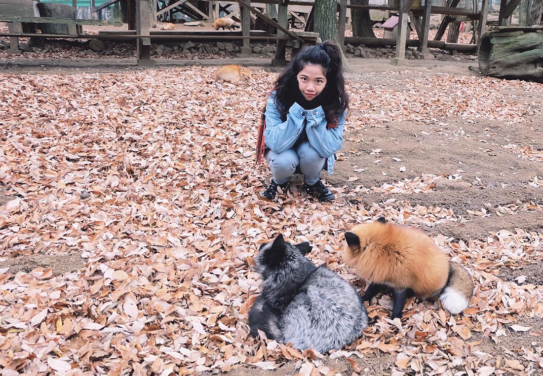 miyagi-zao-fox-village-rainbowholic-39
