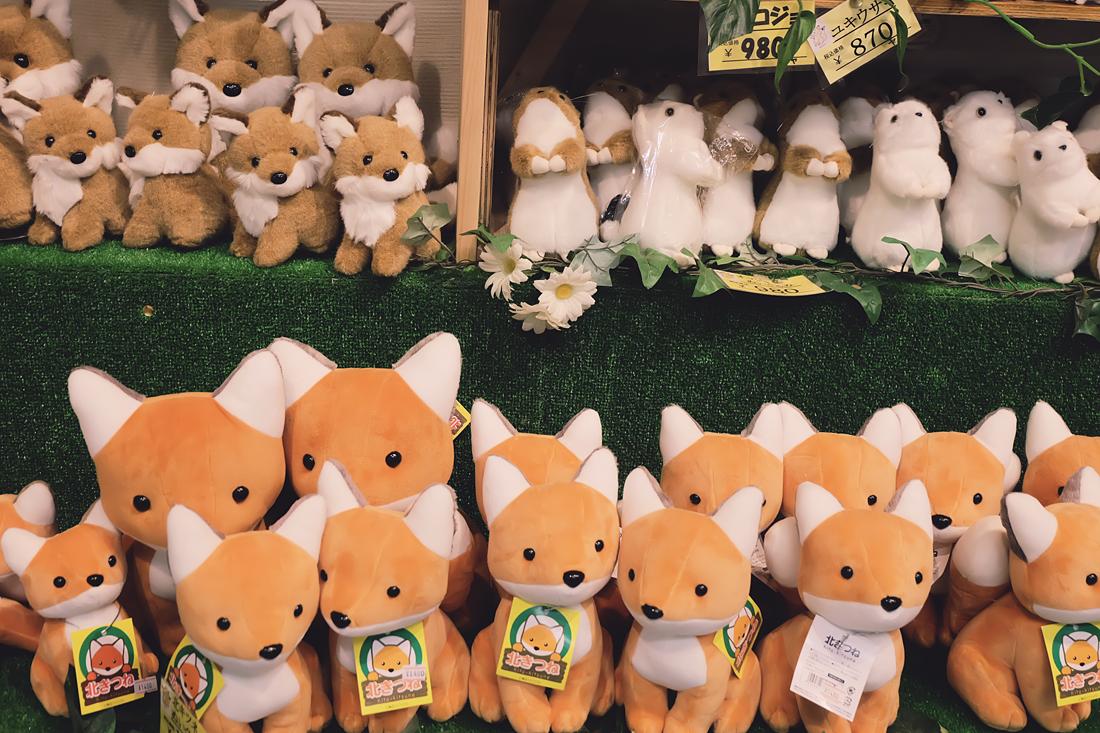 miyagi-zao-fox-village-rainbowholic-93